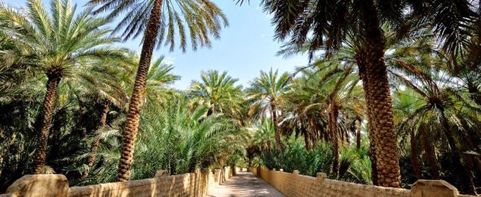 Al-Ain-City-Sightseeing-Tour-from-abu-dhabi