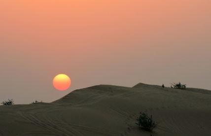 Dune-Bashing-Abu-Dhabi