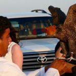 private-overnight-Desert-safari-price -Deals-abu-dhabi