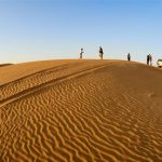 Al-ain-Desert-safari-tour-deals-cost-price